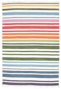 Rainbow Stripe - Blanc Tapis 160X230 Moderne Tissé À La Main Blanc/Crème (Coton, Inde)